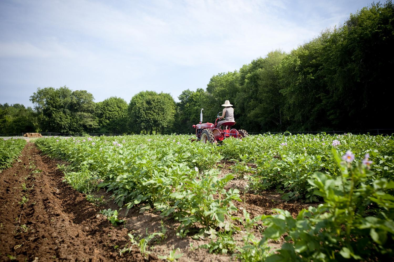 Moraine Farm