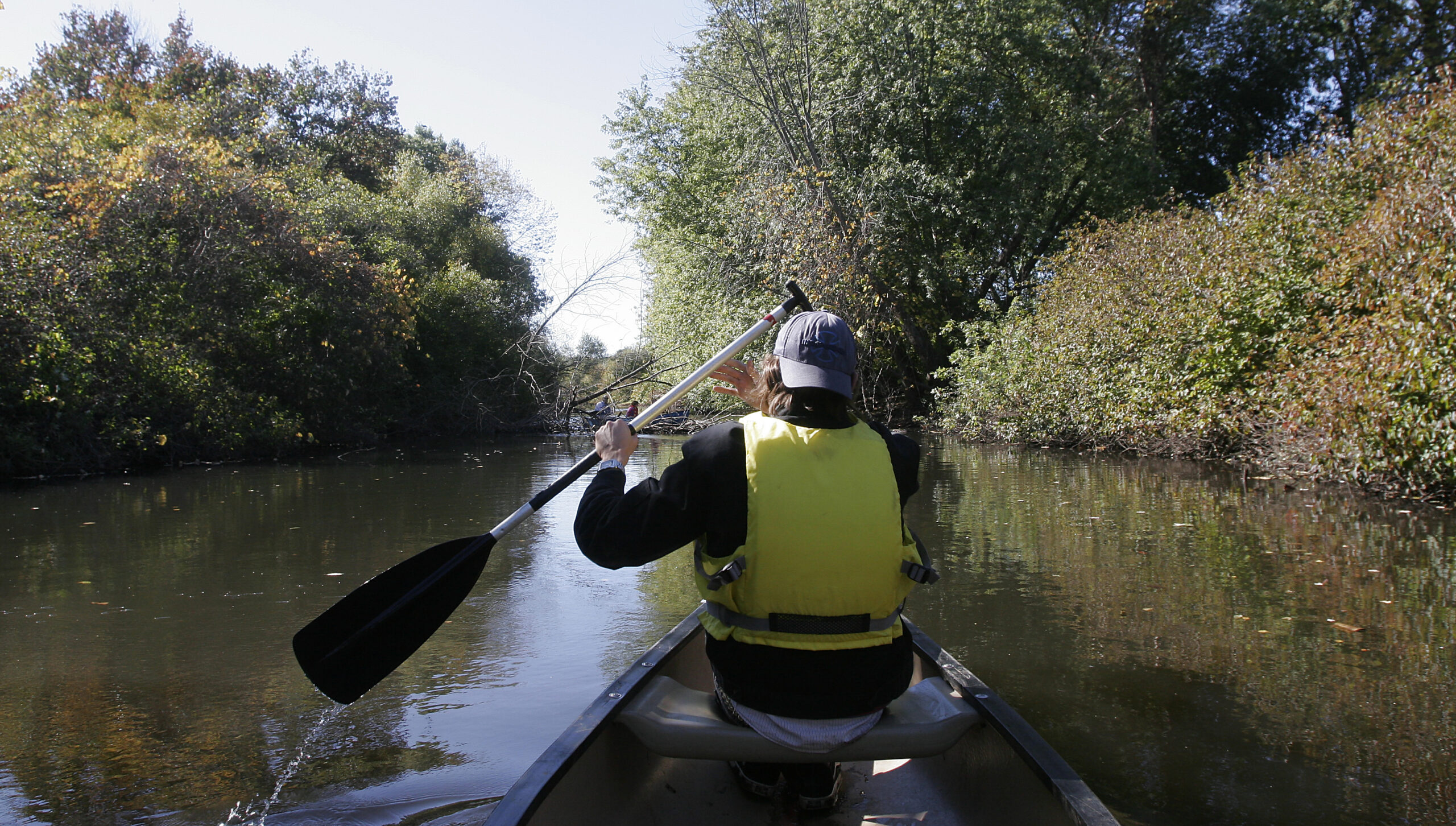 Canoeing down the Neponset; back of paddler in mid-stroke
