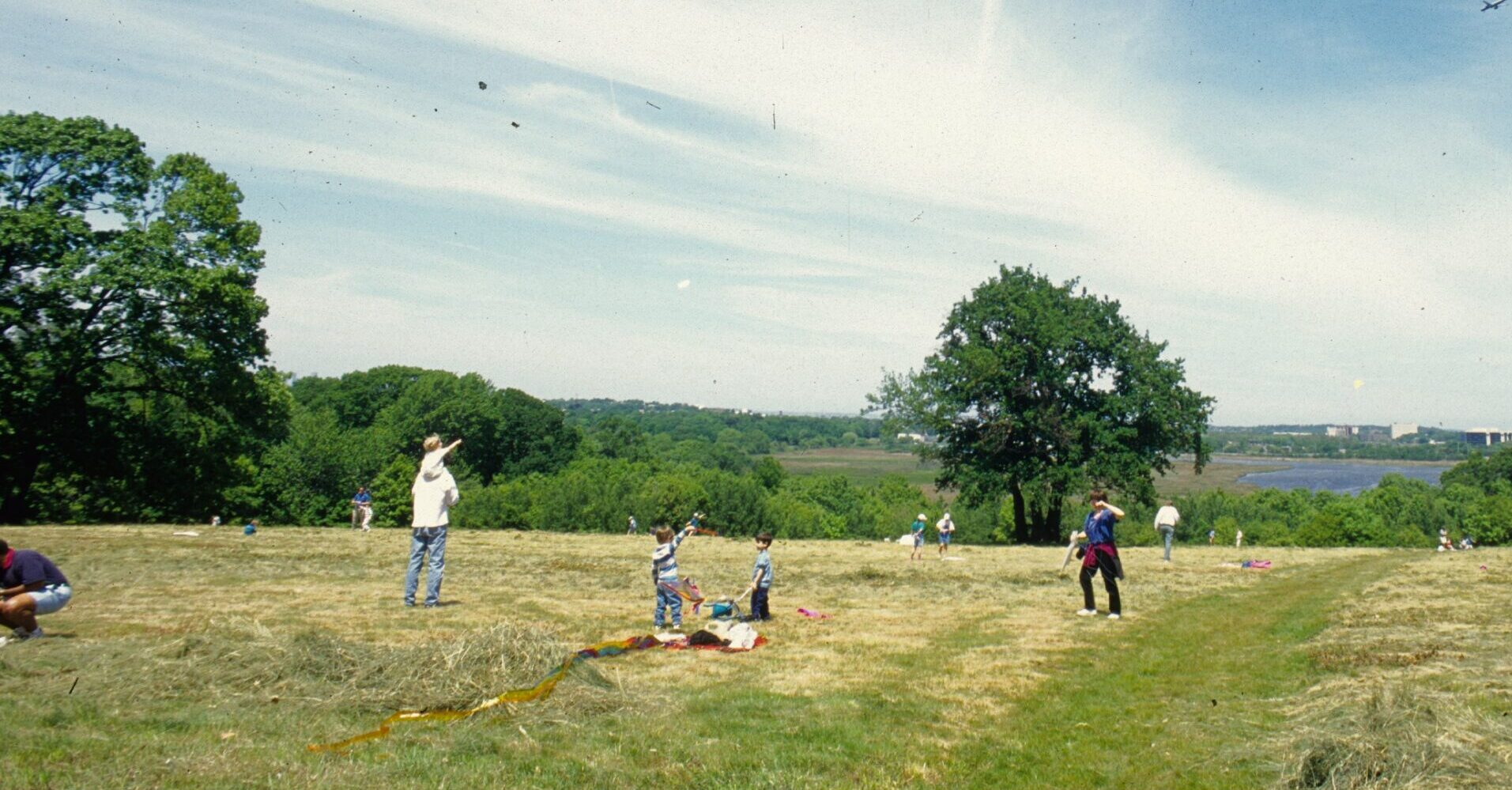 People flying kites at Pierce Reservation