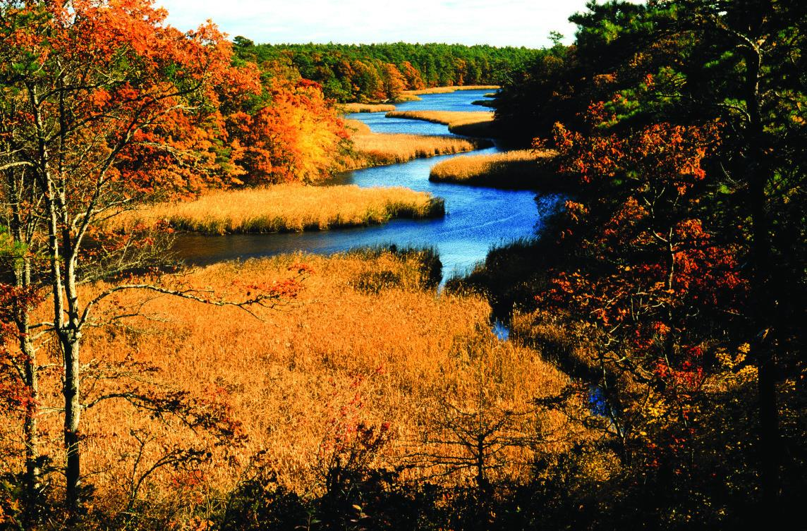 Vibrant fall colors overlooking the Mashpee River