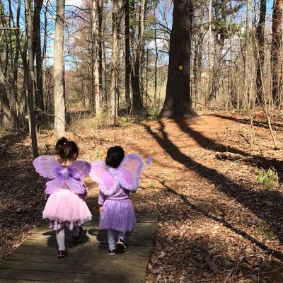 Fruitlands Fairies