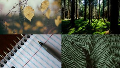 Trail Writing