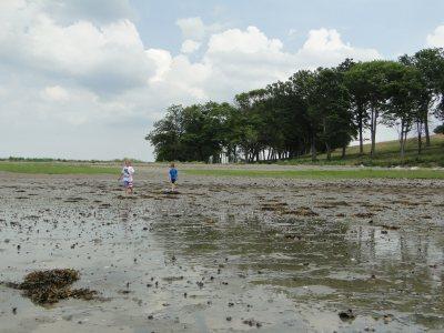 coastal explorers