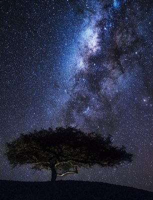 night sky kenya
