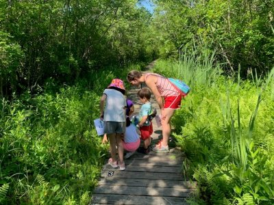 Family Bog Hike