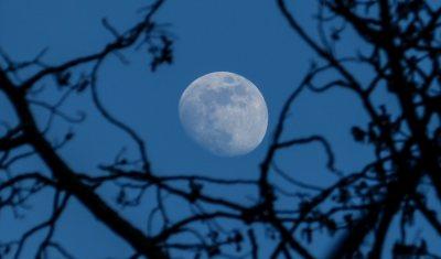 moon in blue sky