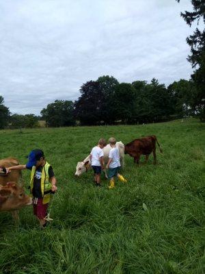 Preschool Farm Explorers