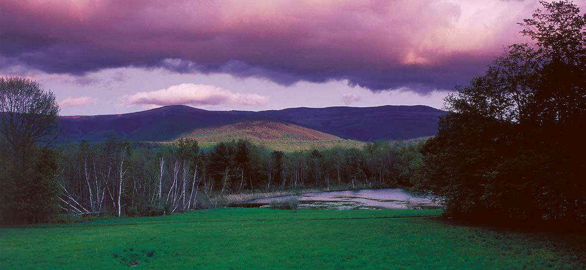 Field Farm View