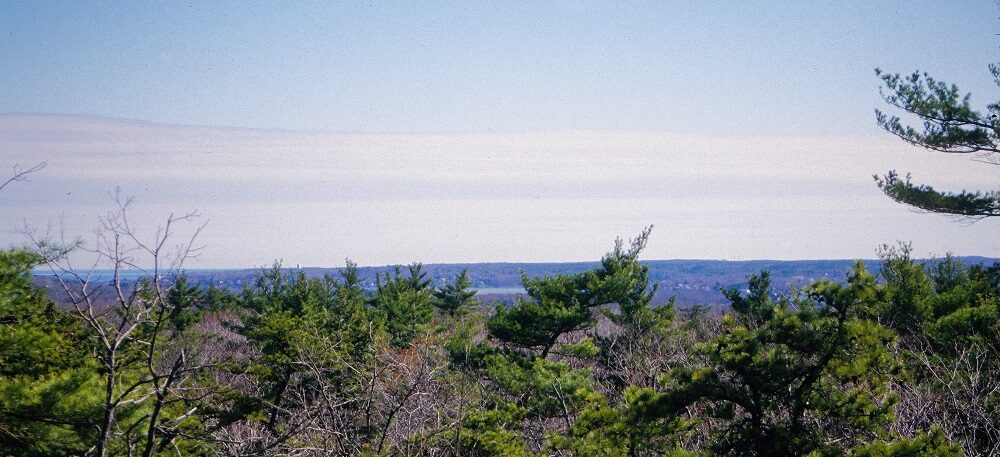 a view of Cape Ann from a scrubby peak