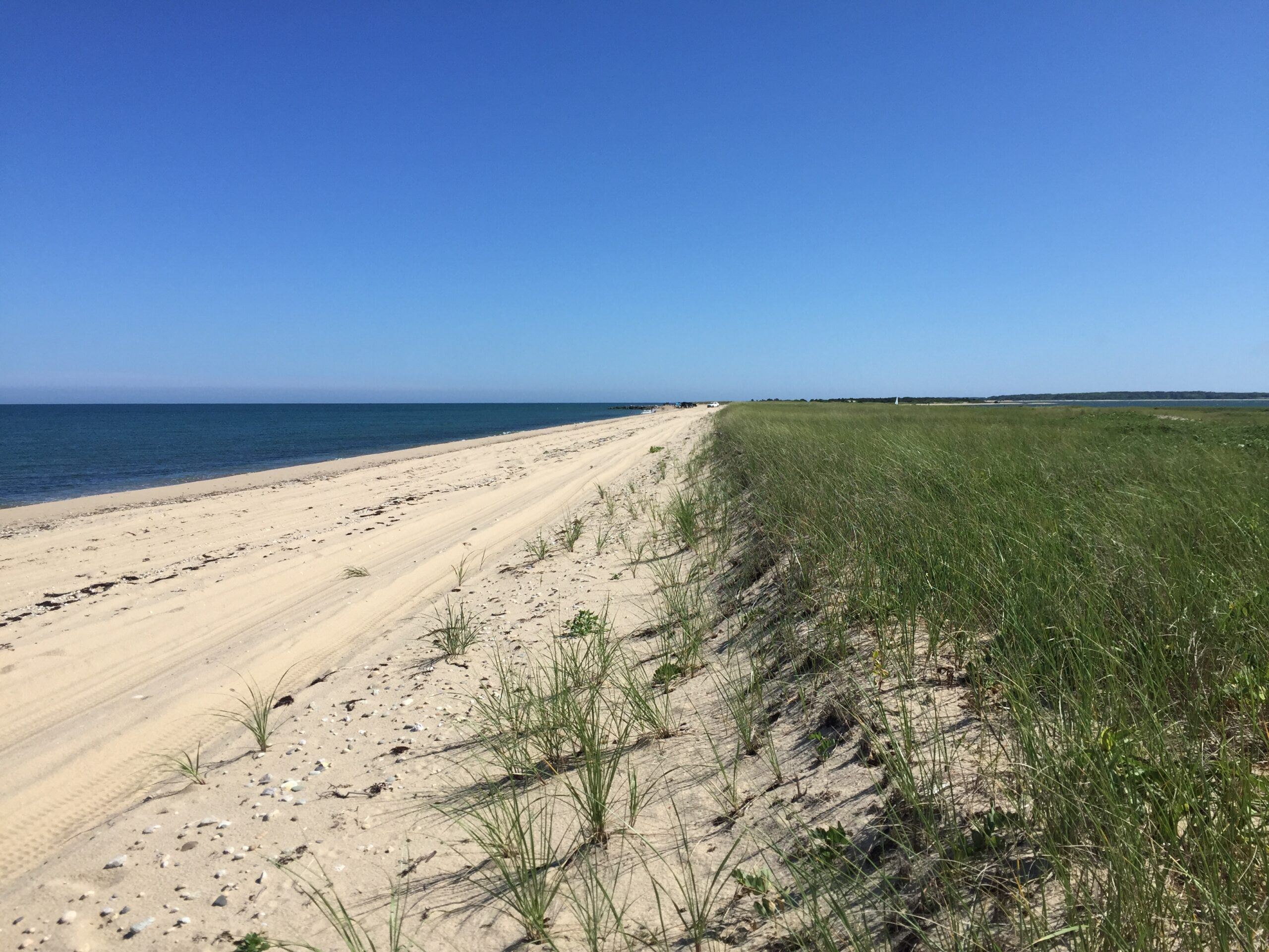 Oversand vehicle trail along a beach on Martha's Vineyard