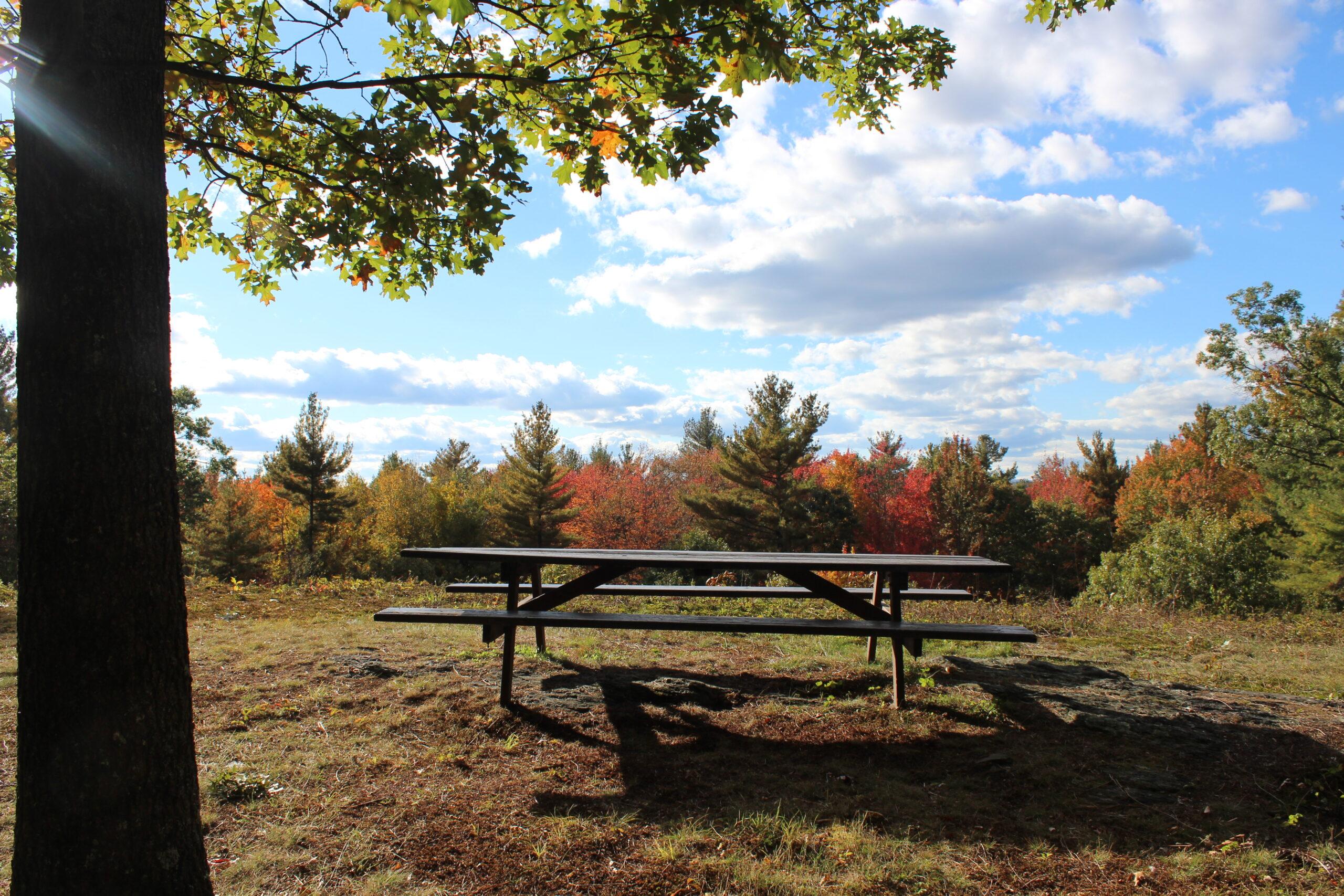 Fruitlands picnic bench