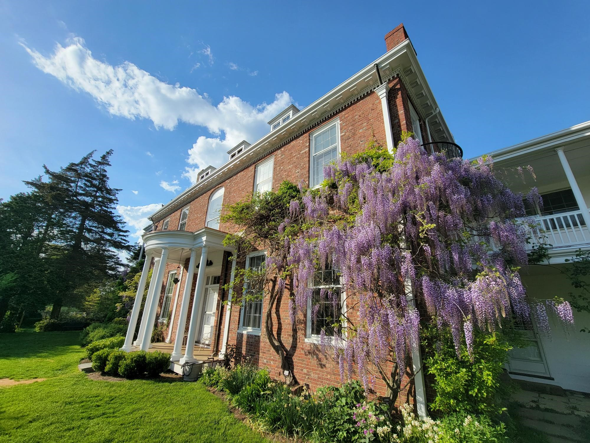 Long Hill historic house with wisteria