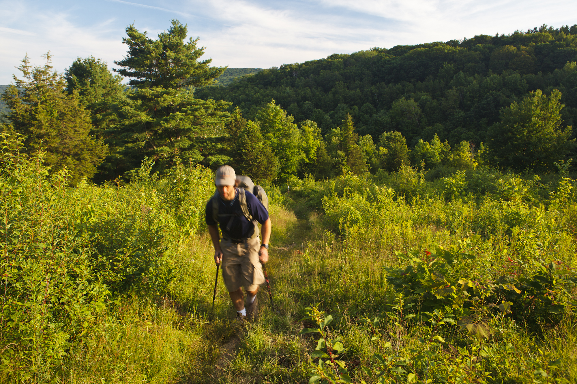 A man hiking the Appalachian Trail on Tyringham Cobble, Tyringham, Massachussets.