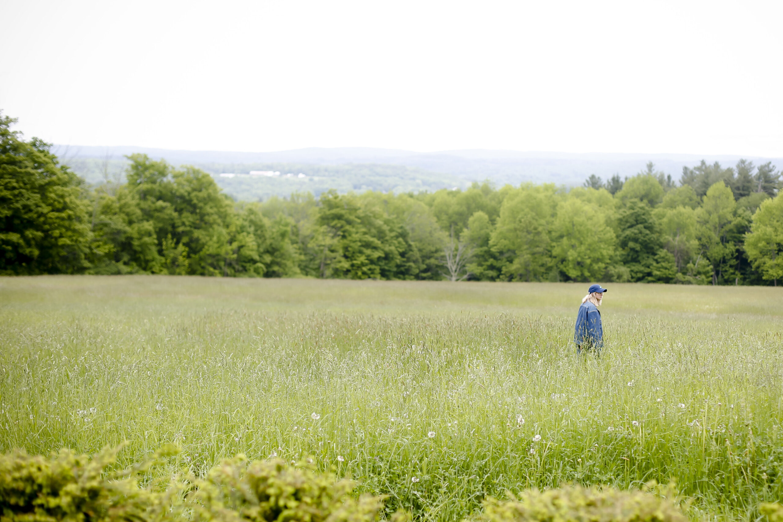 Person walking in tall grass