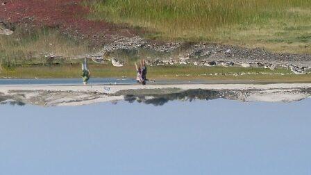 Choate Island Day