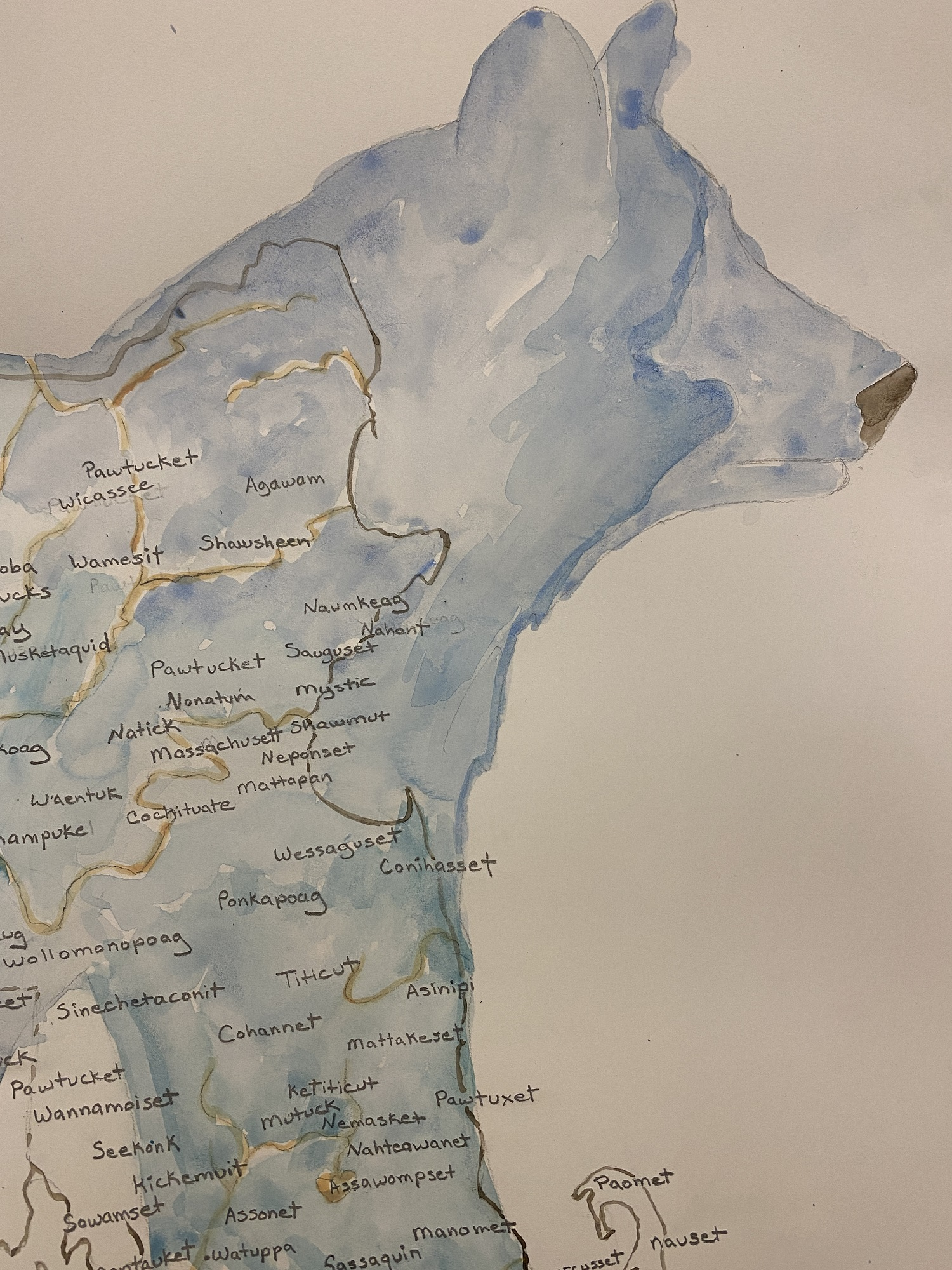 a watercolor map in the shape of a bear