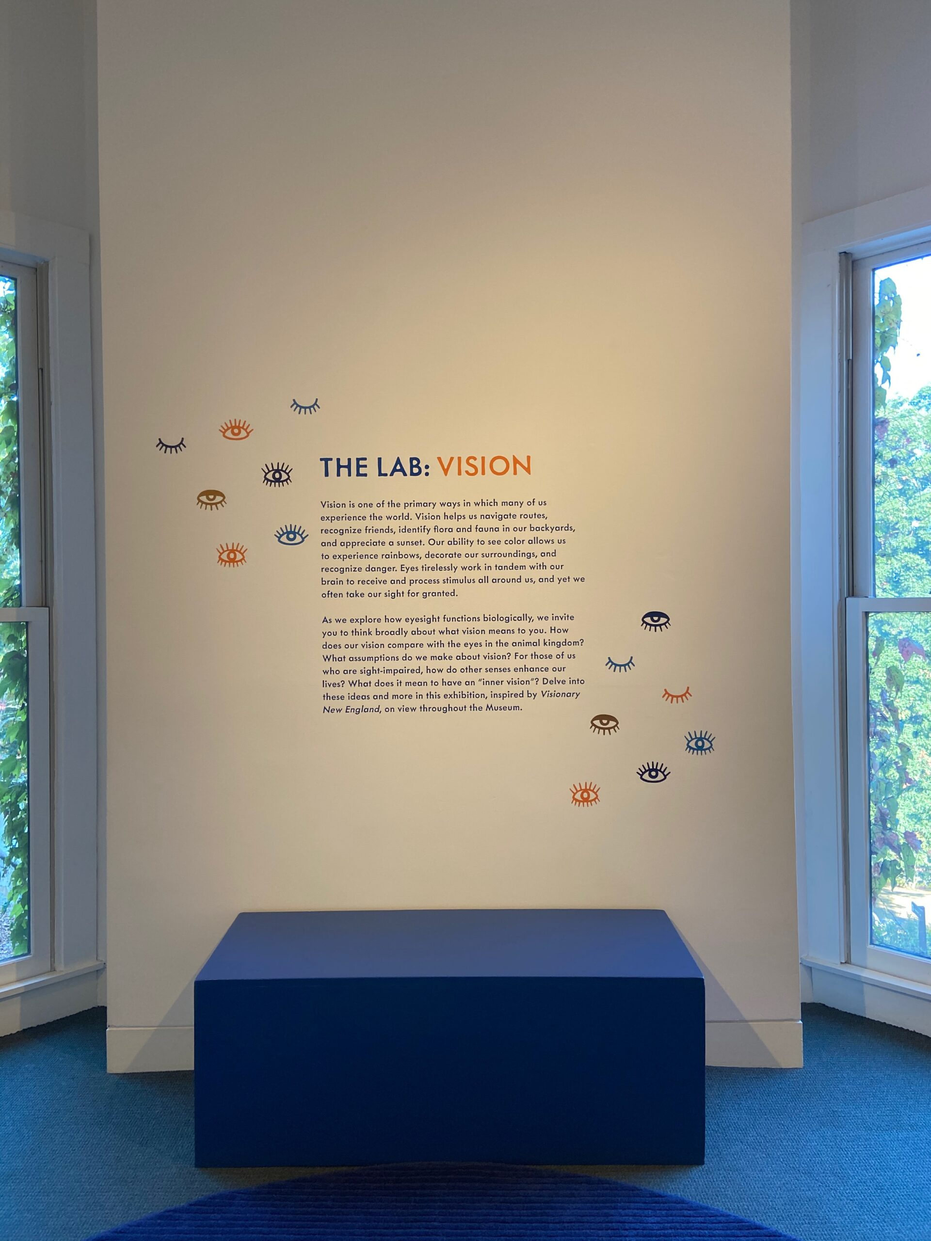 wall text introducing an exhibition