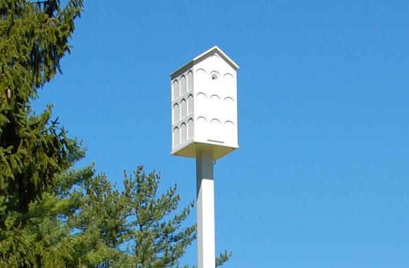 a white honeybee house