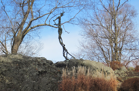 a bronze sculpture, twisted link a vine