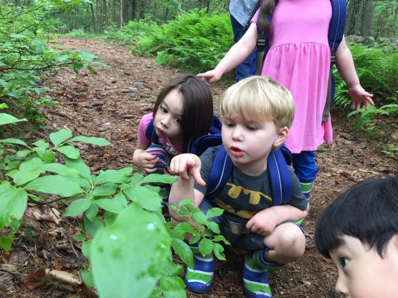 nature school moose hill
