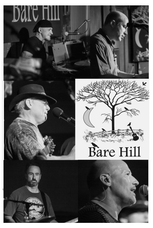 Bare Hill Band