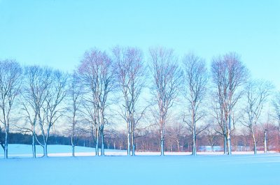 appleton winter