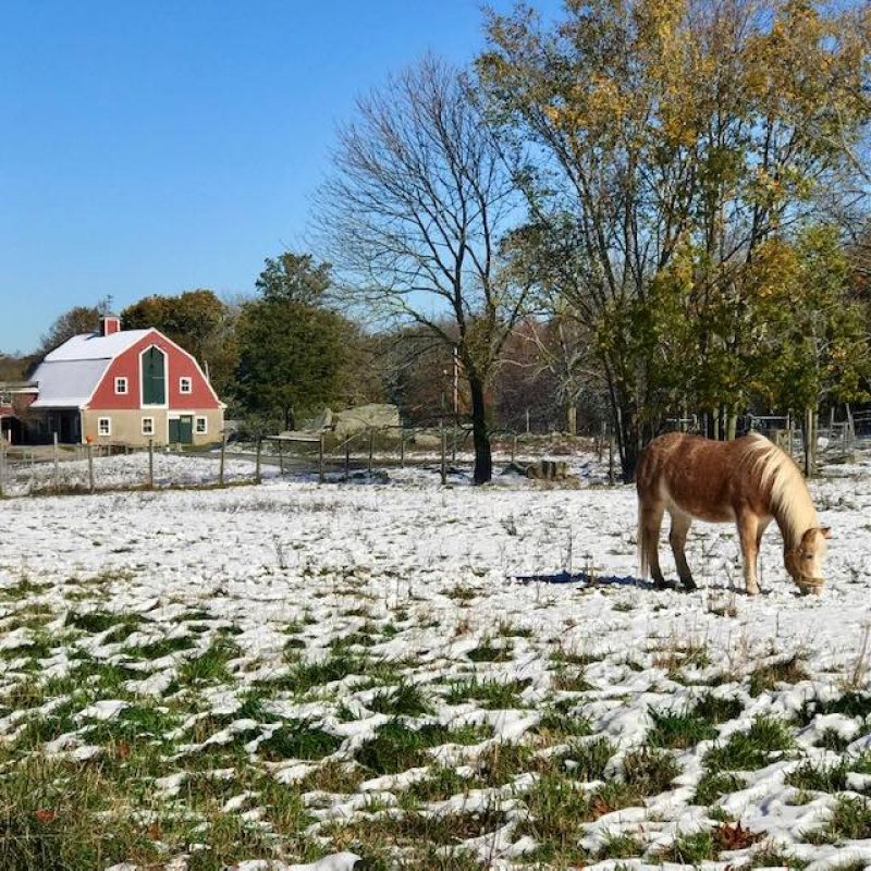 Weir River Farm Winter