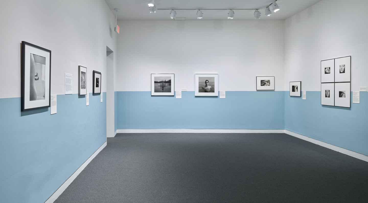 photographs in a gallery on a blue and white wall