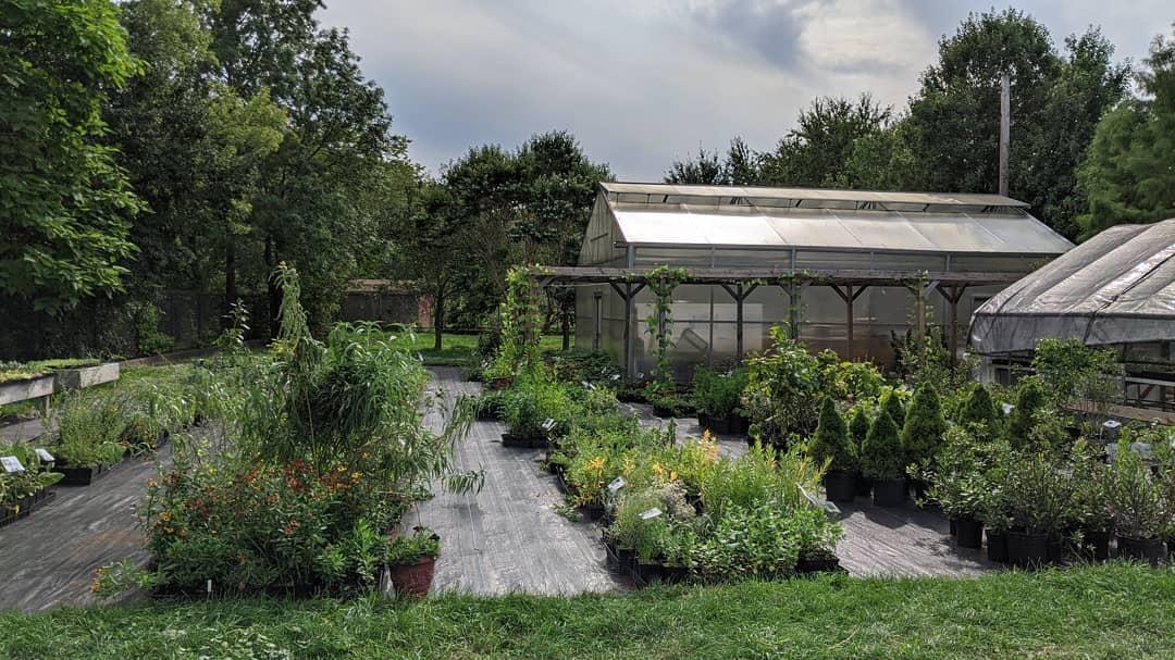 Urban Greenhouse and Garden