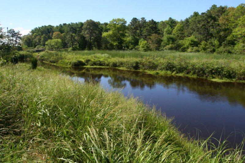 Lyman Reserve