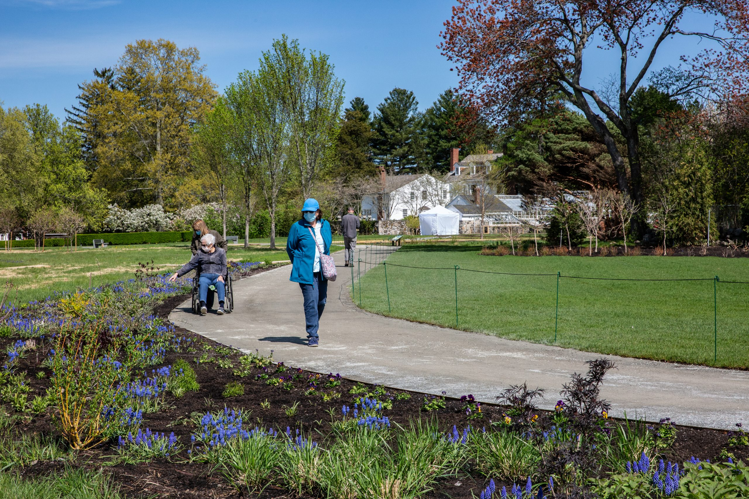Woman in wheelchair on the accessible path running through the garden of Stevens Coolidge House & Gardens