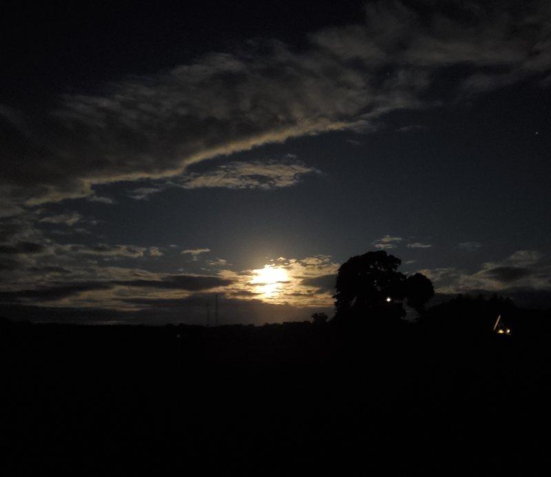 appleton moon
