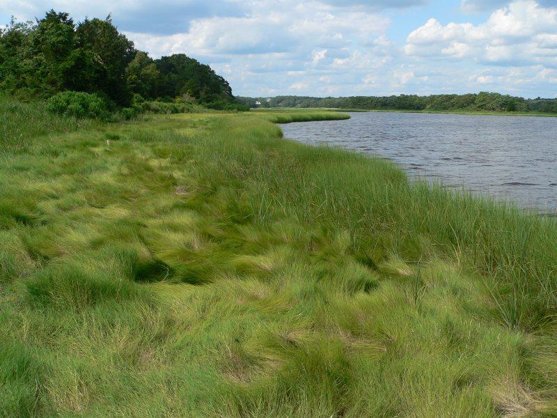 Slocum's River